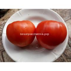 Большой Зак красный (Big Zac red)
