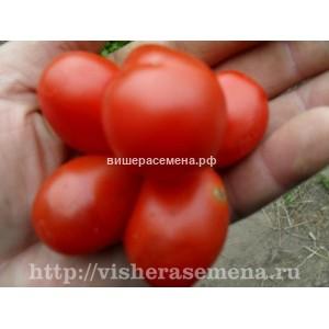 Чесночный томат